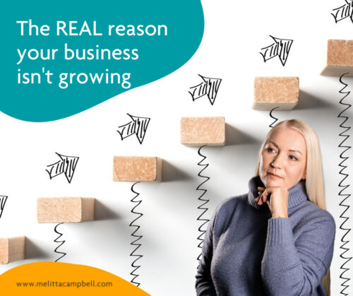 The Real reason why your business isn't growing - article from Business Coach, Melitta Campbell
