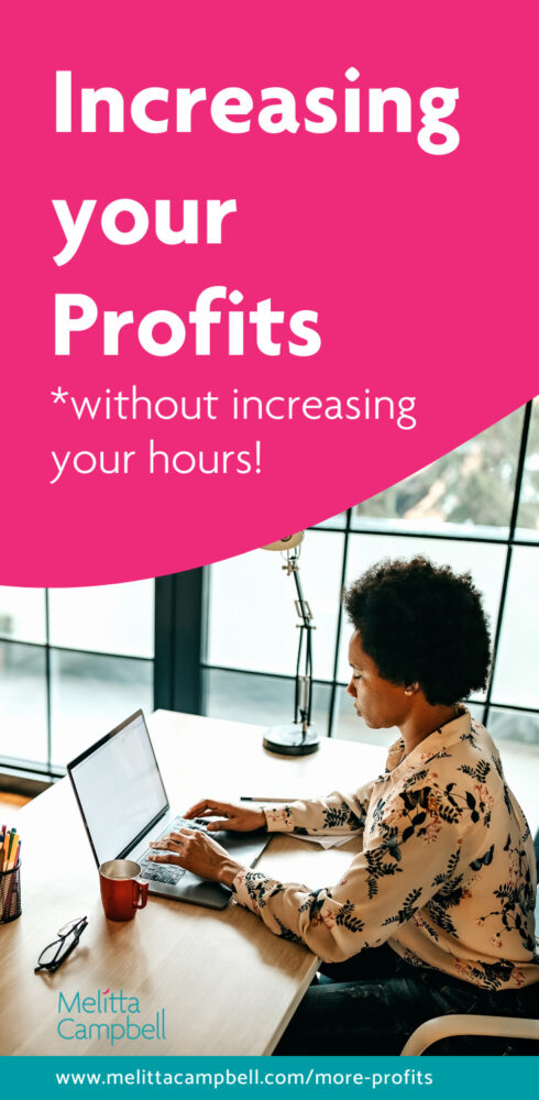 Increasing your Profits, without increasing your hours! Article for Female Entrepreneurs and Women in Business + Bonus '6 Steps to More Clients' eBook